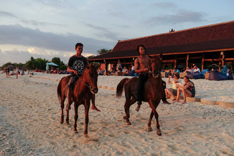 Caballos en la playa de Gili Trawangan, Indonesia