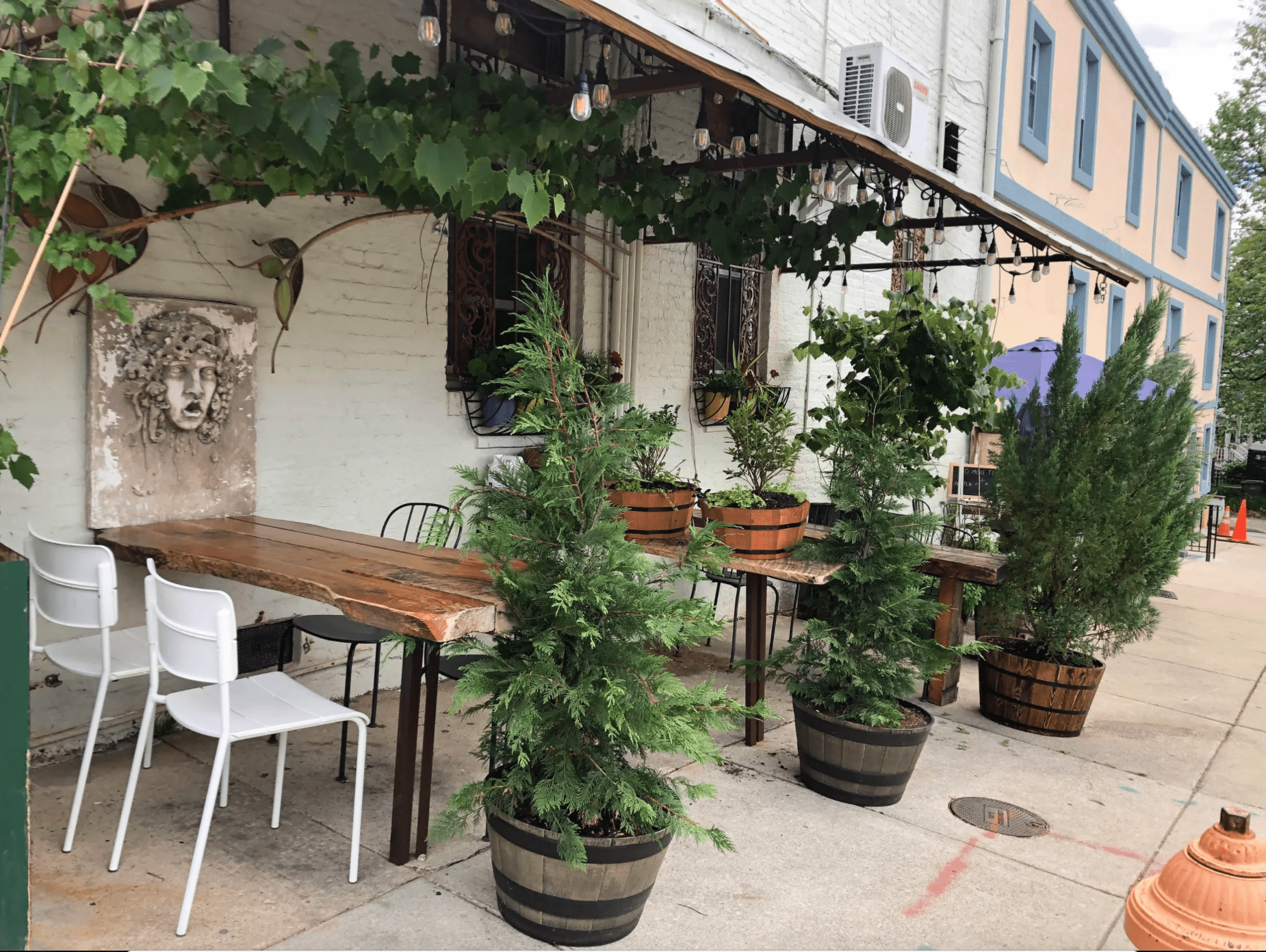 Wooden outdoor tables with potted trees and plants