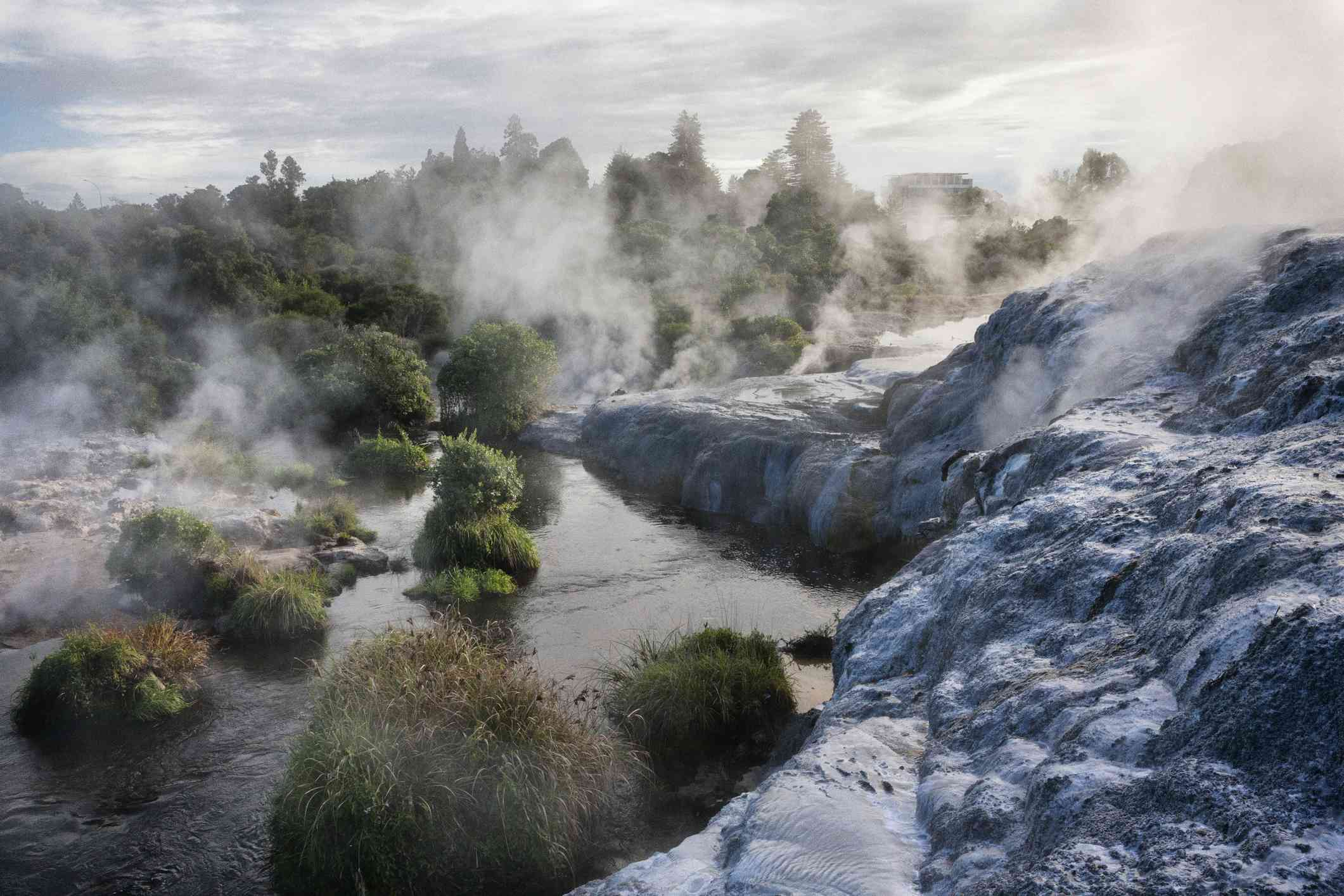 steaming thermal pools with rocks and shrubs