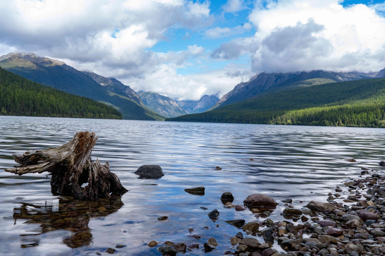 Landscape with Bowman Lake and mountains, Glacier National Park, Montana, USA