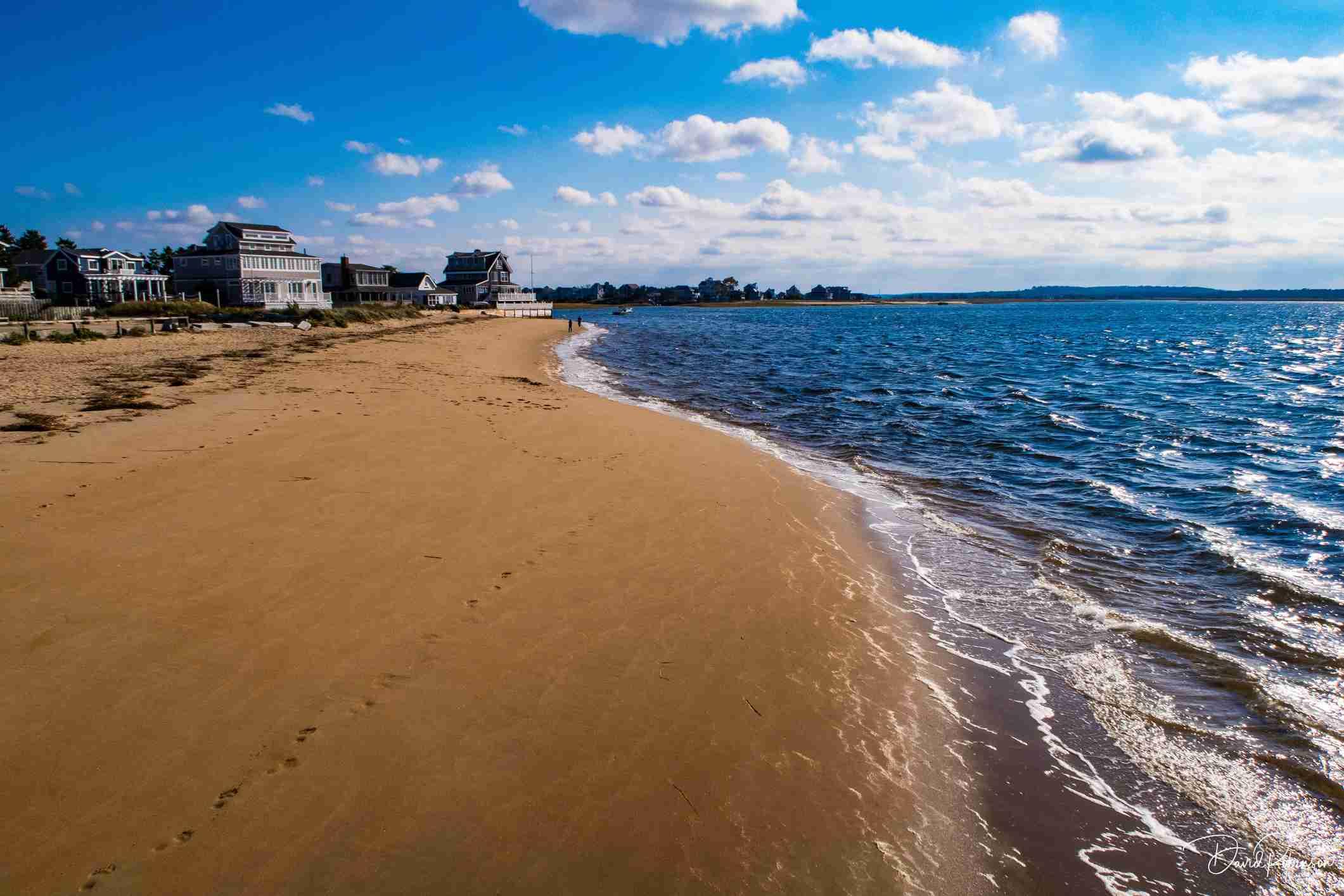 Plum Island Beach, near Boston, United States