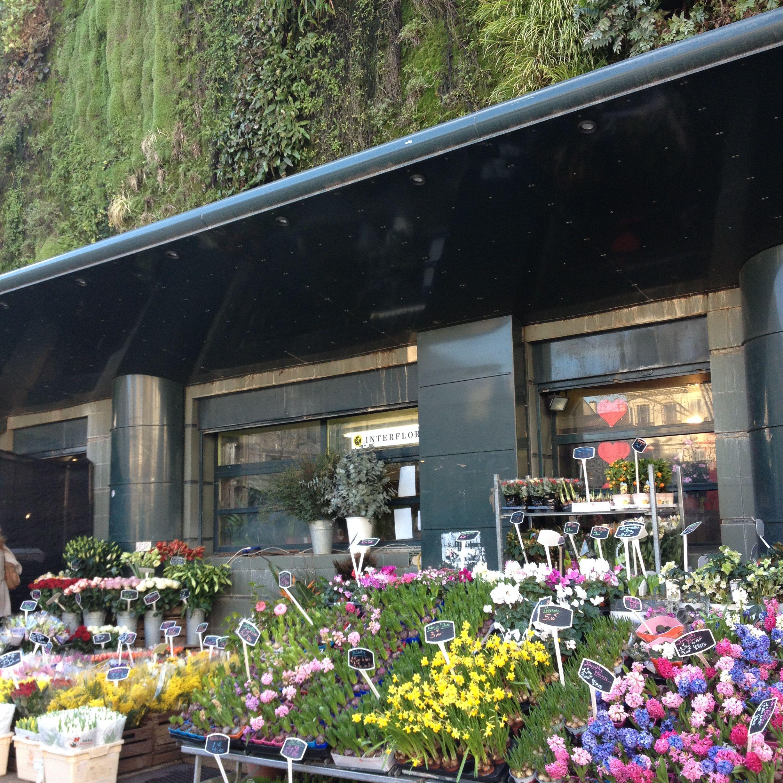 A flower market at Les Halles