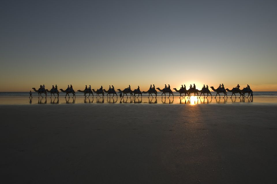Camel ride on Cable Beach.