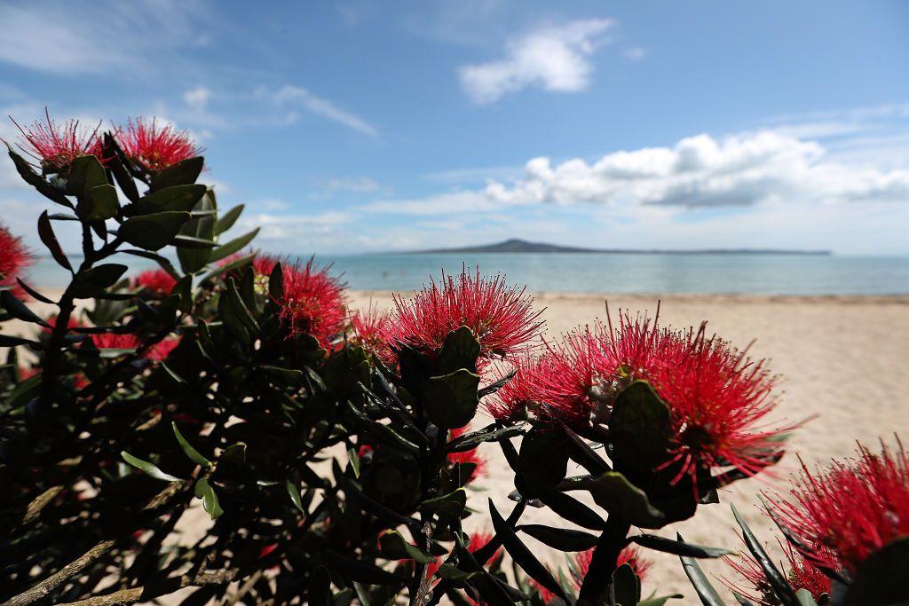 Monte Rangitoto, en el Golfo de Hauraki frente a Auckland