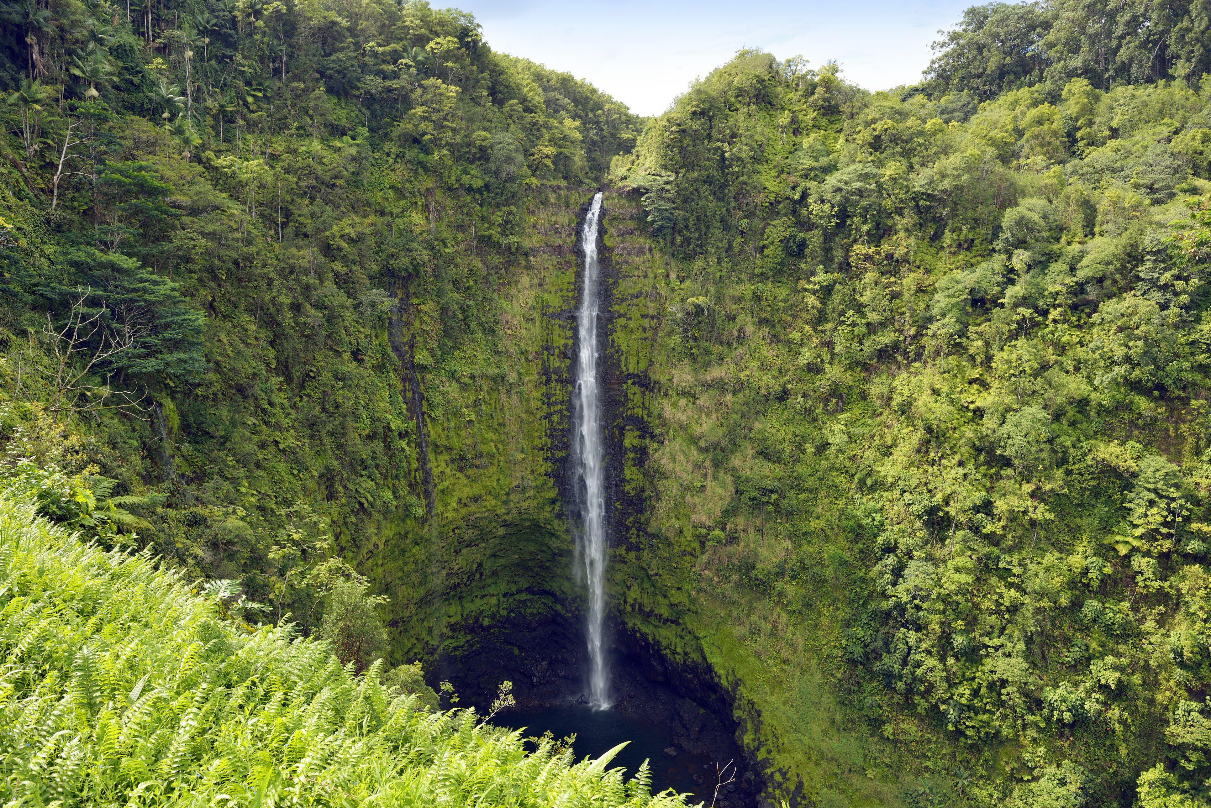 Estados Unidos, Hawái, Isla Grande, Honomu, Cataratas Akaka