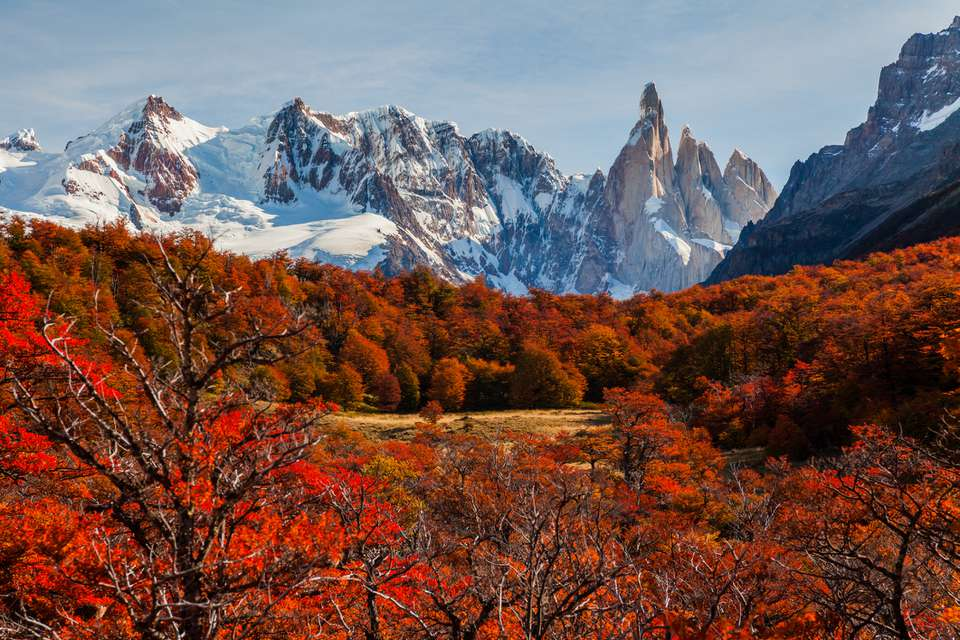 Beautiful autumn near Cerro Torre. Patagonia, Argentina