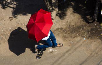 The 7 Best Travel Umbrellas Of 2019