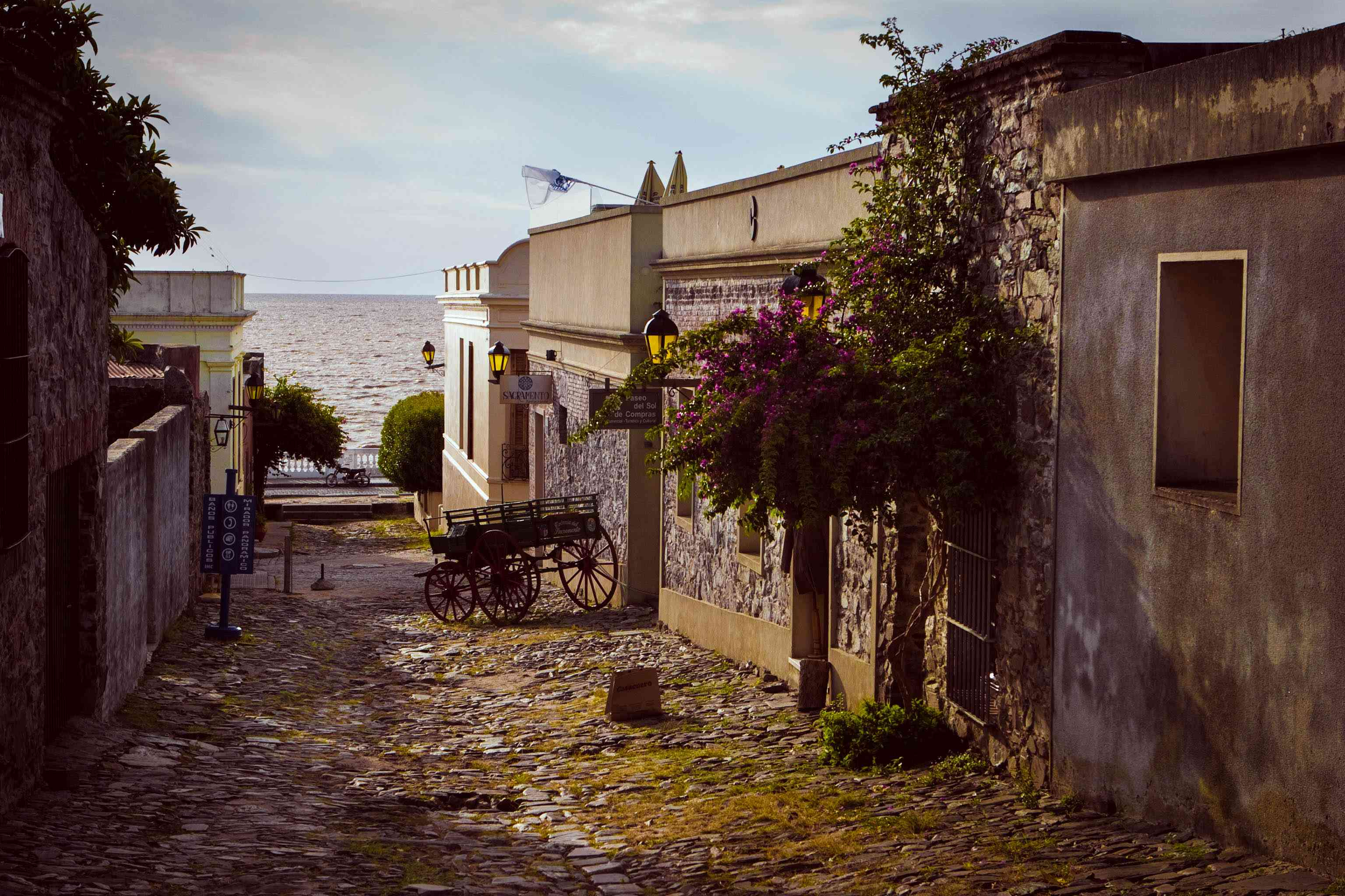 Old houses and a coach in the street of the historical city in southwestern of Uruguay. Unesco World Heritage town.