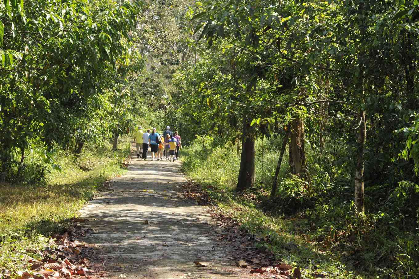 Hiking in Cat Tien National Park
