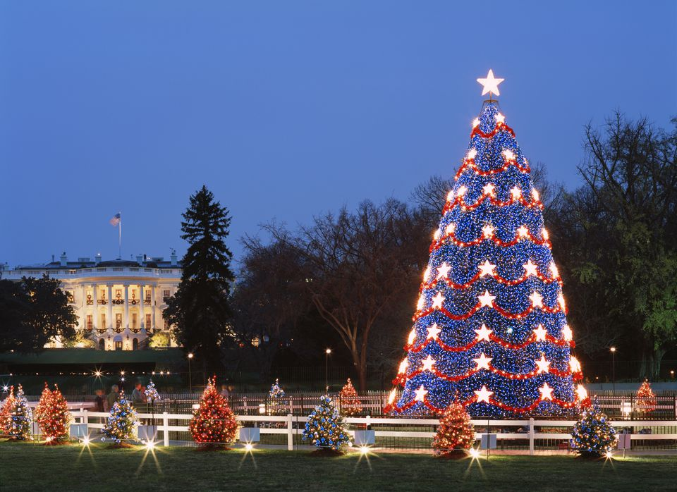 usa washington dc illuminared christmas tree with white house in background