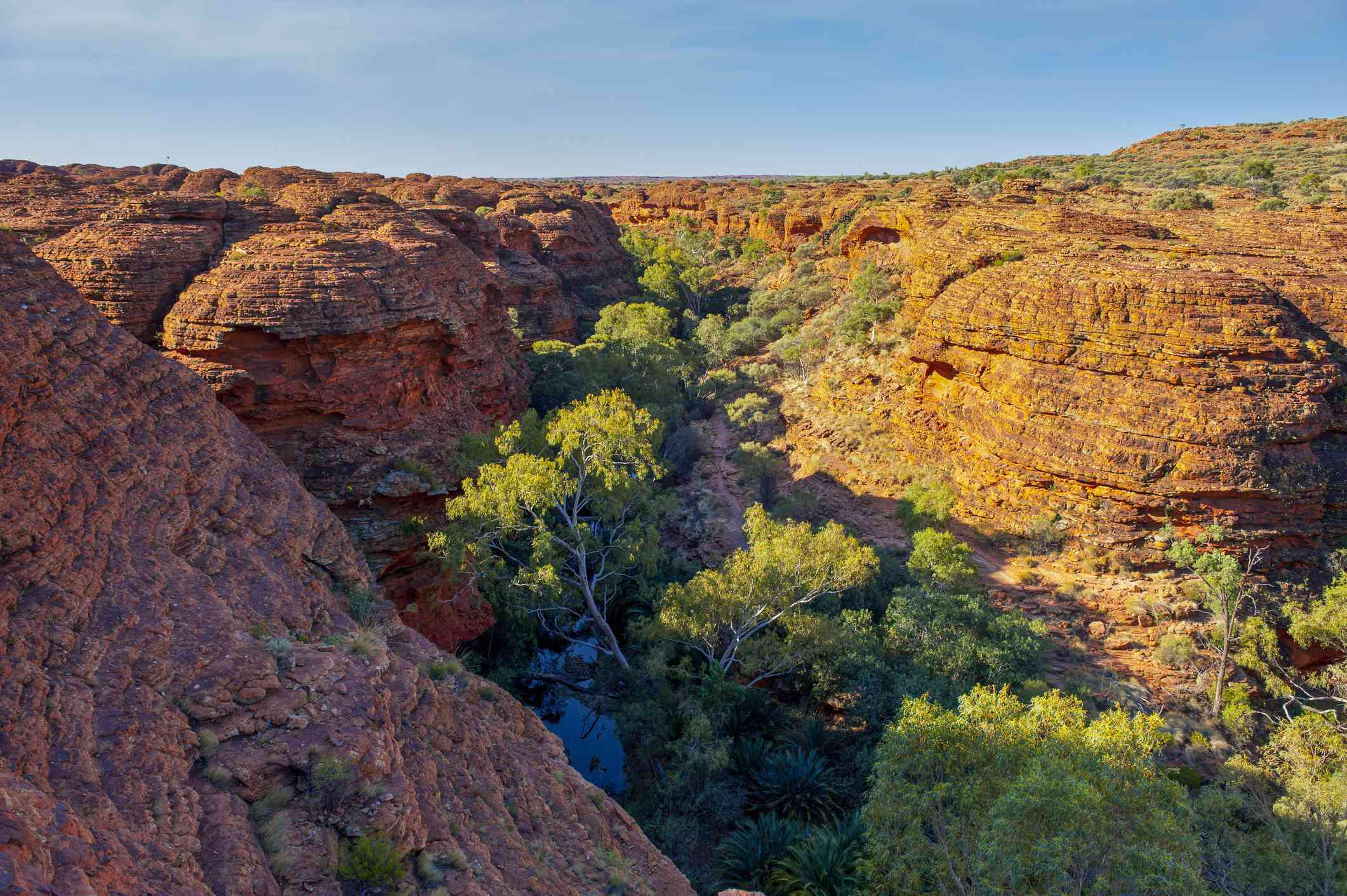 Red rock canyon with river and green foliage in the valley