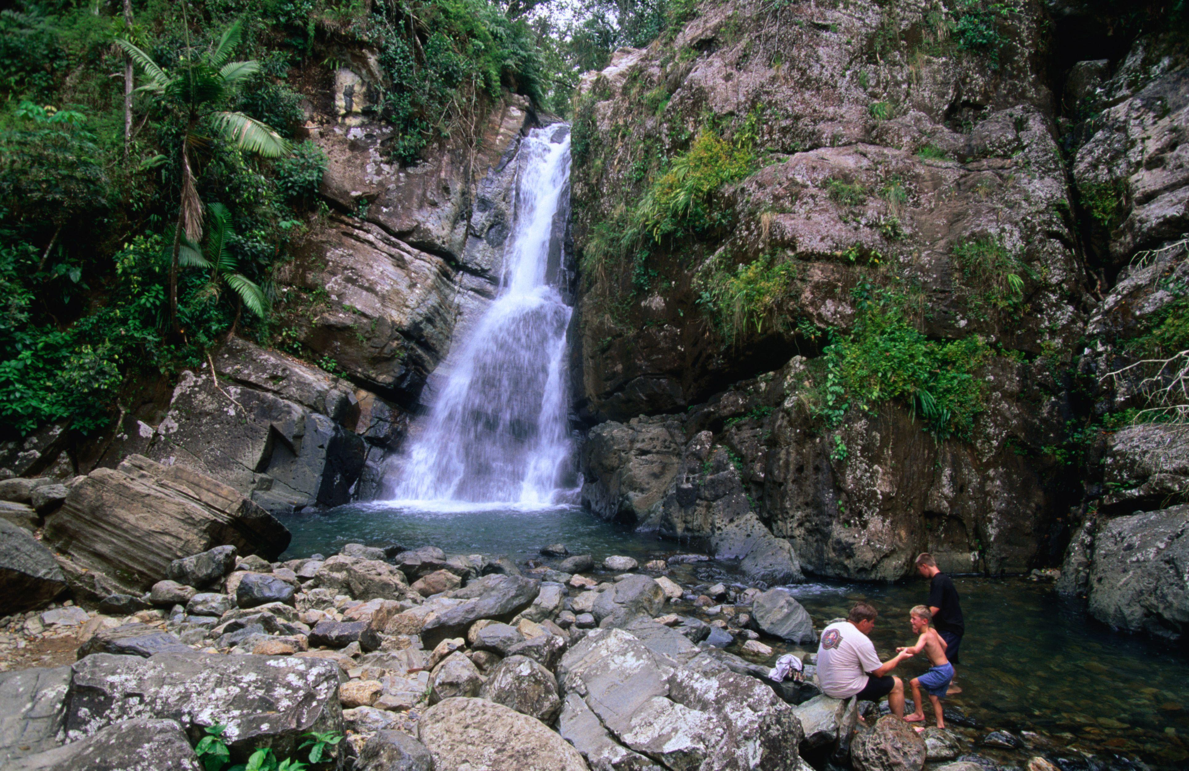 Swimming near La Mina Falls in El Yunque (California National Forest).
