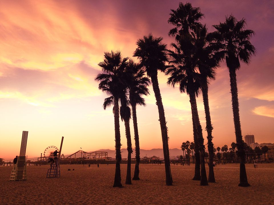 Sunset on Santa Monica Beach with palm trees red toned.