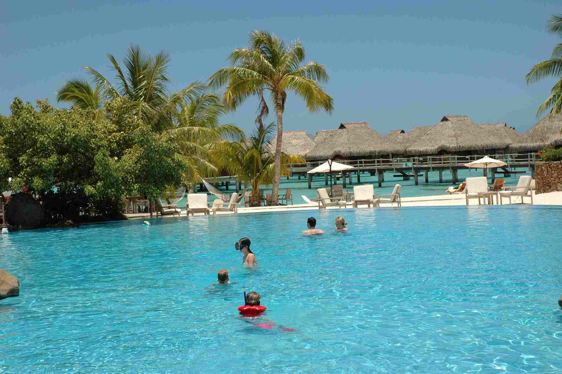 People swimming in a pool, Moorea, Tahiti, French Polynesia, South Pacific
