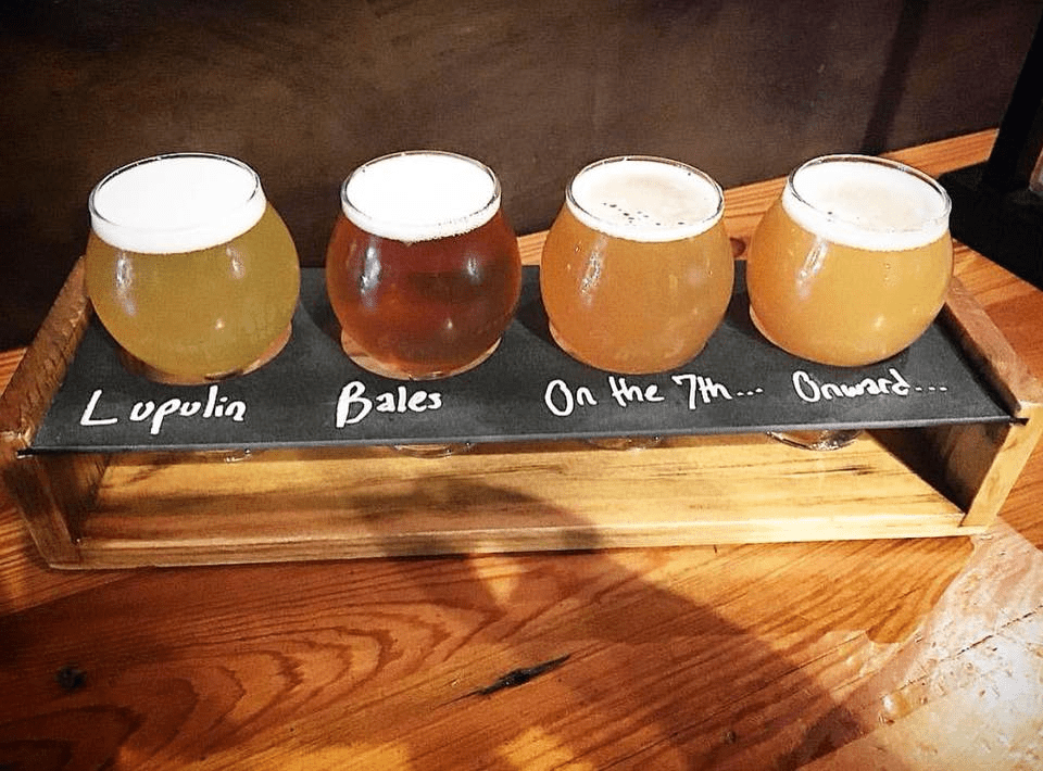 a flight of four beers at Hops and Grain