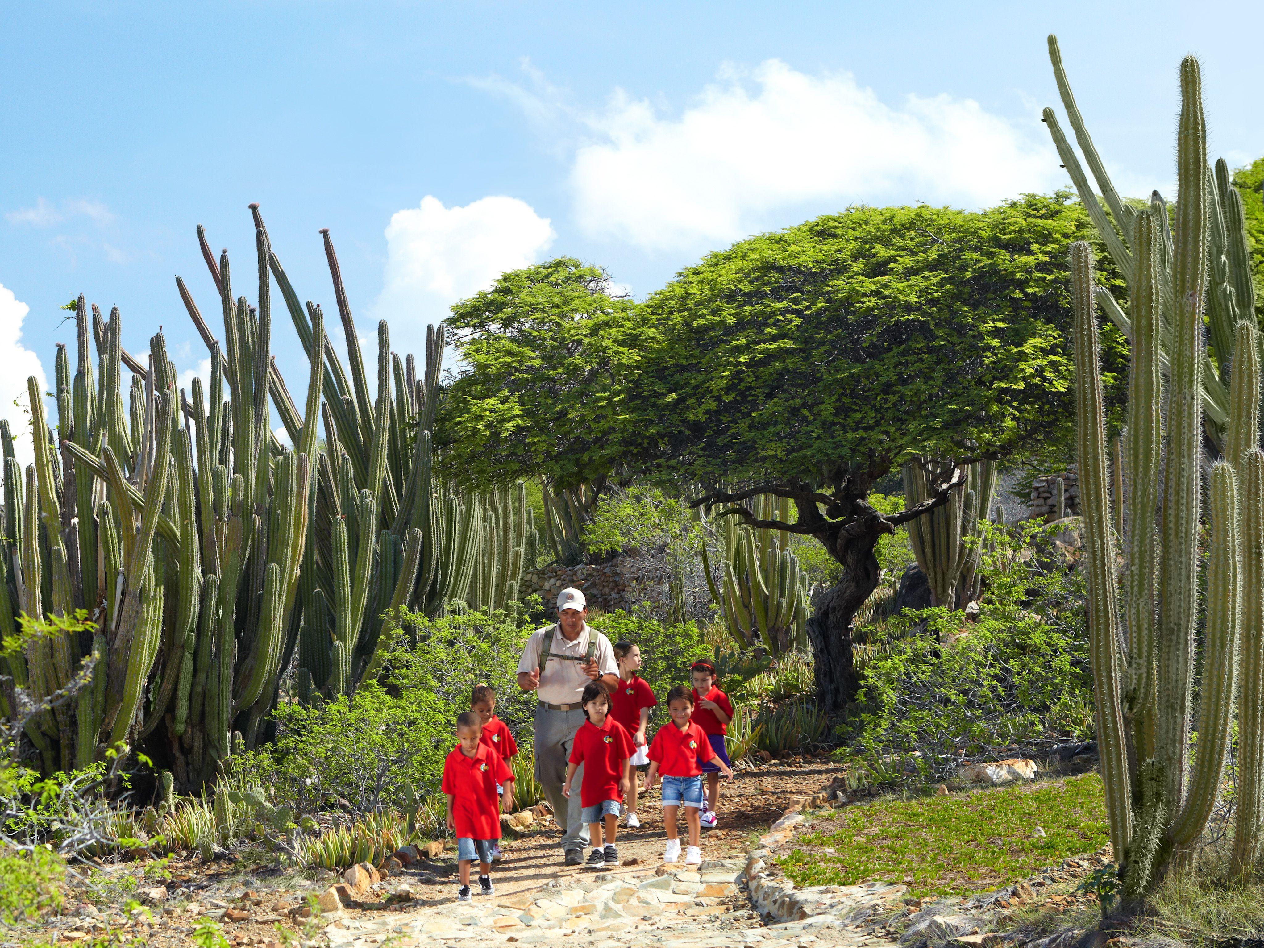 Ranger leads a school group through Arikok National Park in Aruba.