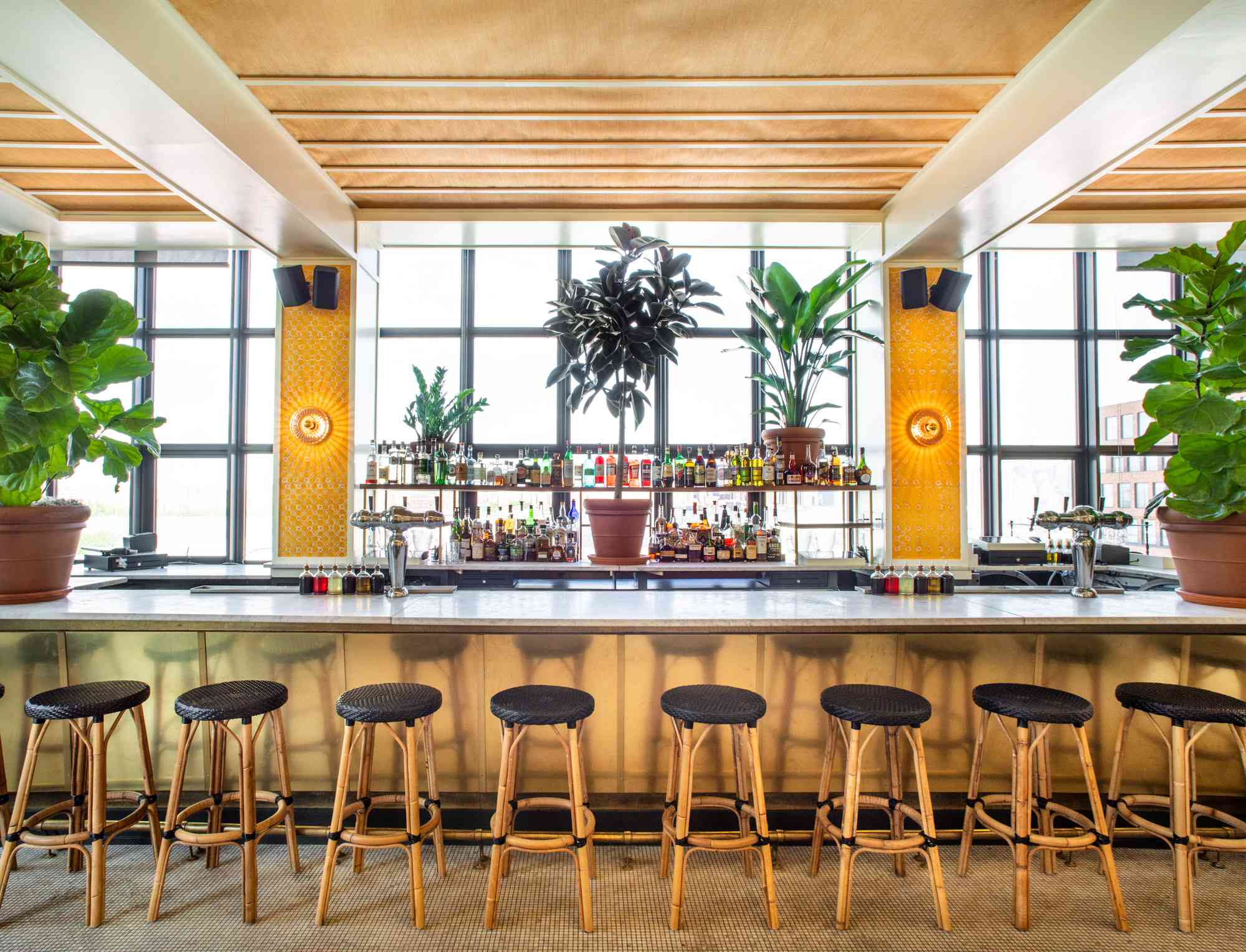 Bar with .a wall of windows, potted plants and eight chairs