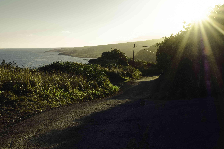 Road along the coast to Hana