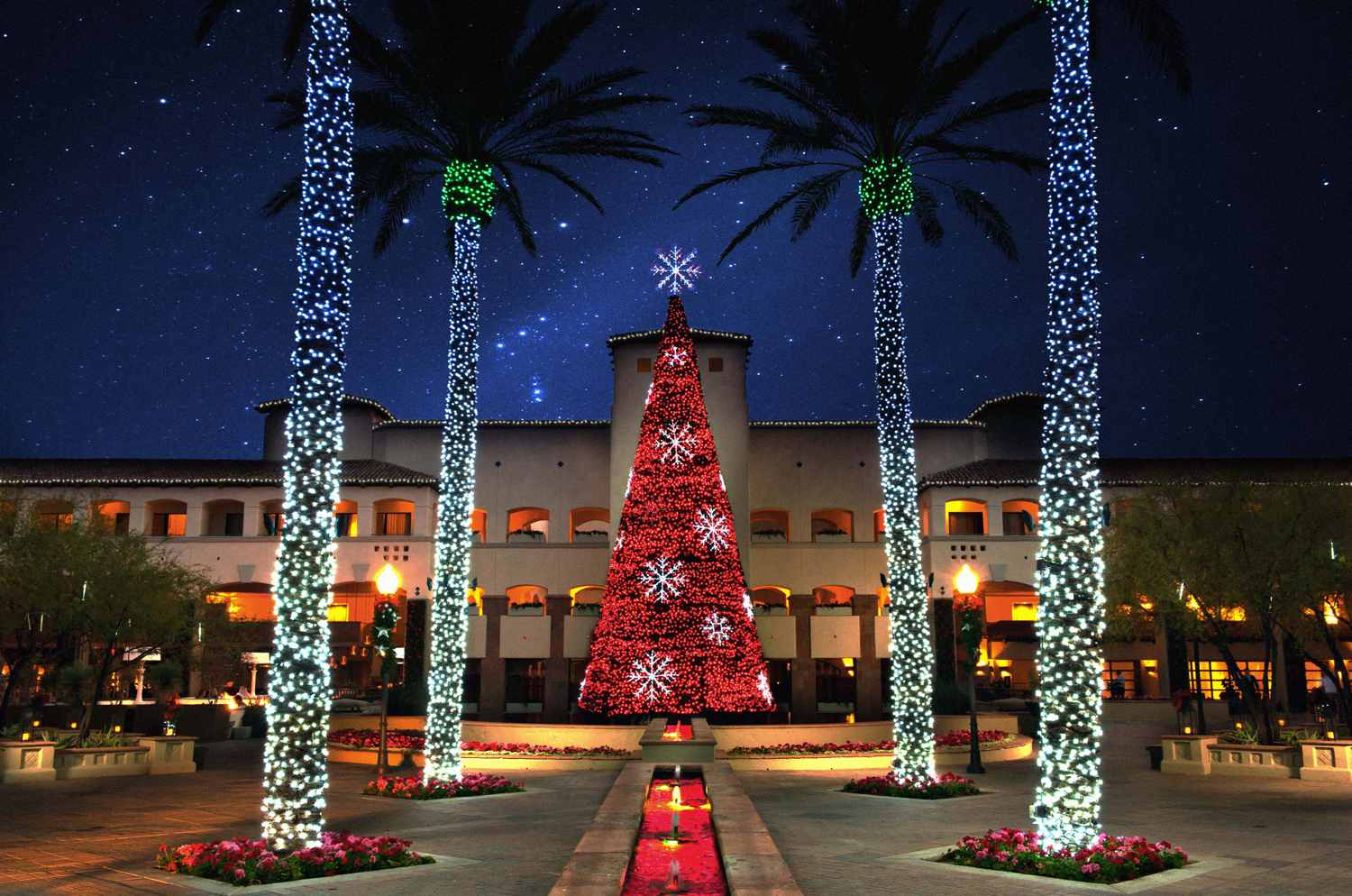 Phoenix Christmas Events 2019 Things to Do for Christmas in the Greater Phoenix Area