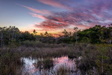 Sunset at Pa-Hay-Okee Overlook, Everglades National Park, Florida