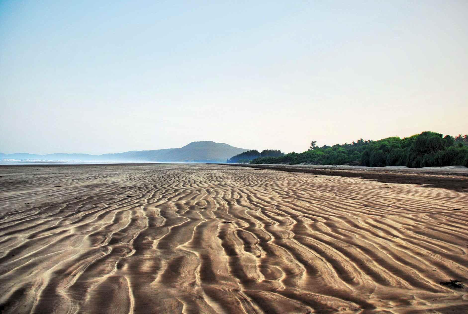 Diveagar beach, Maharashtra.
