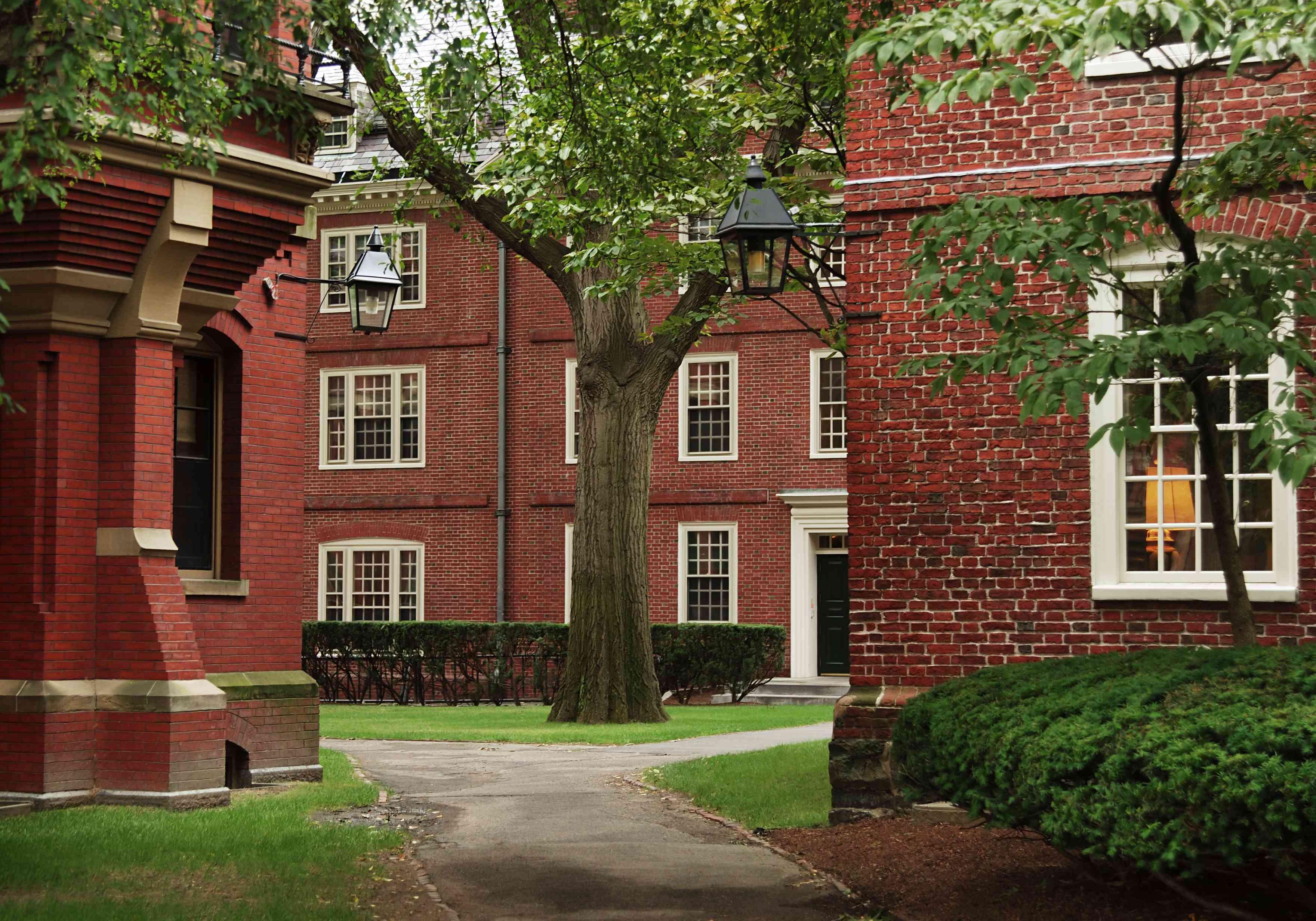 University campus at Harvard