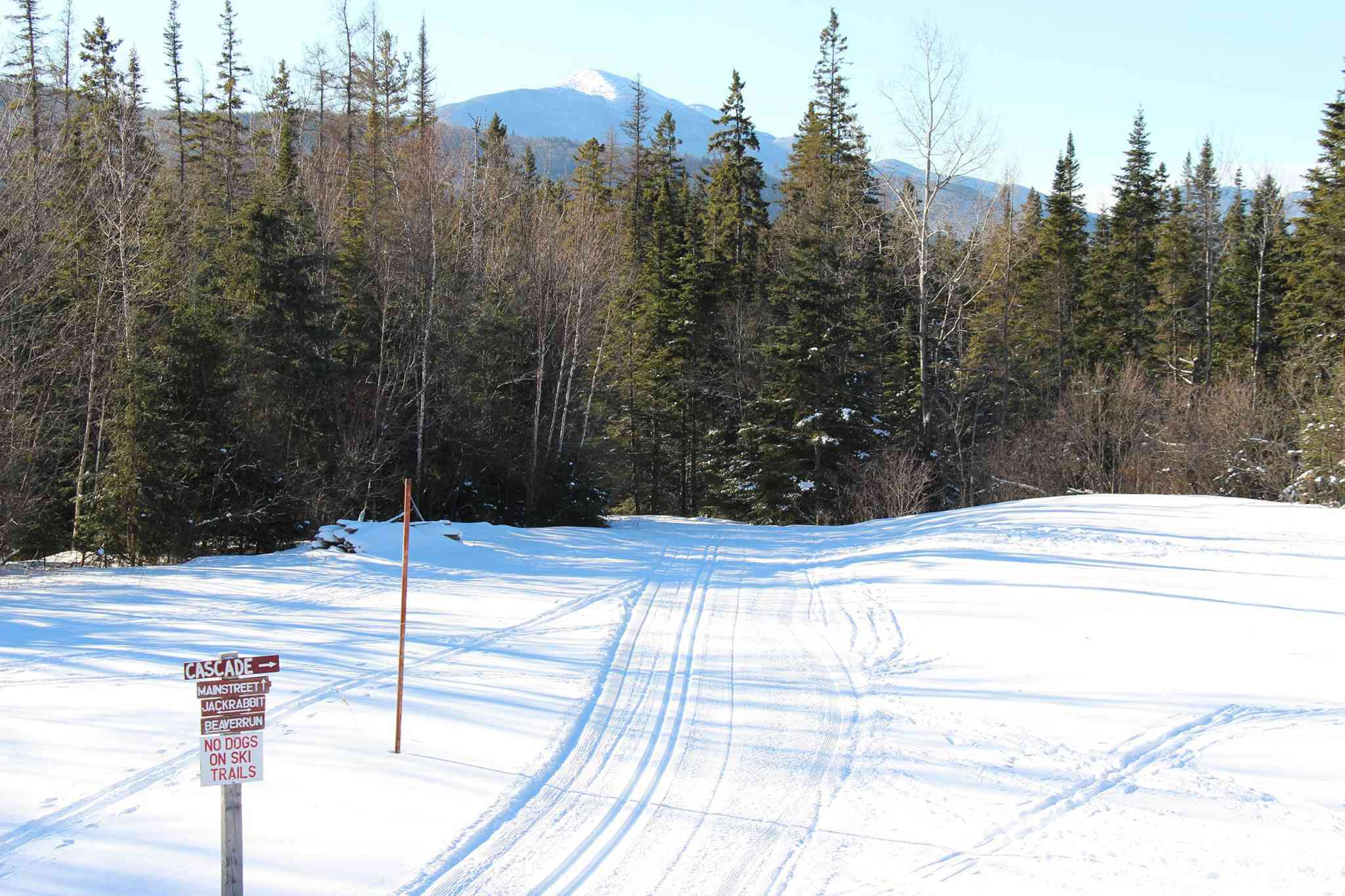 view of ski trails and a sign posts with a line of trees in the background