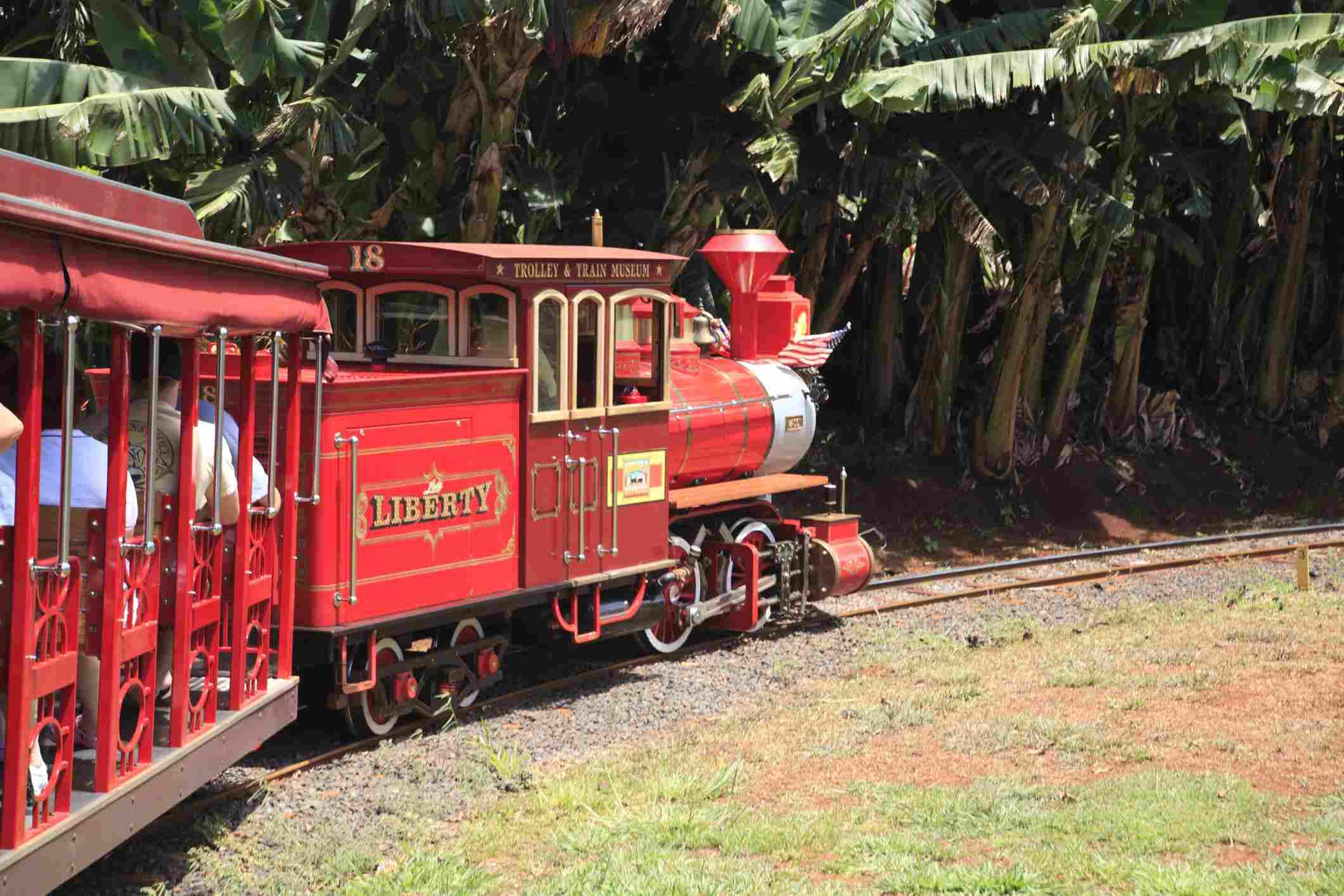 Pineapple Express, Dole Plantation