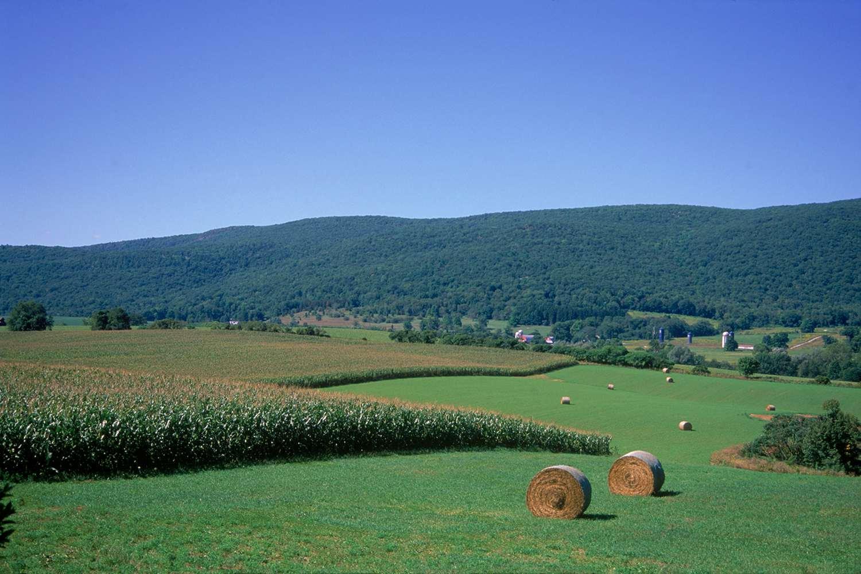 Taconic Mountain Range