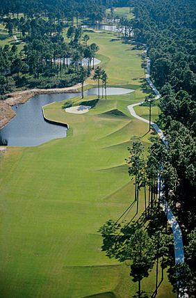 Aerial view of Fairway on Robert Cupp Golf Course at Palmetto Hall Plantation