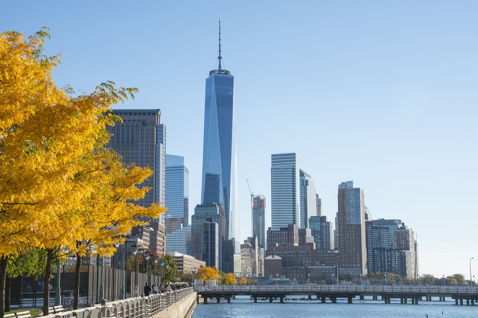 One World Trade Center behind autumnal tree