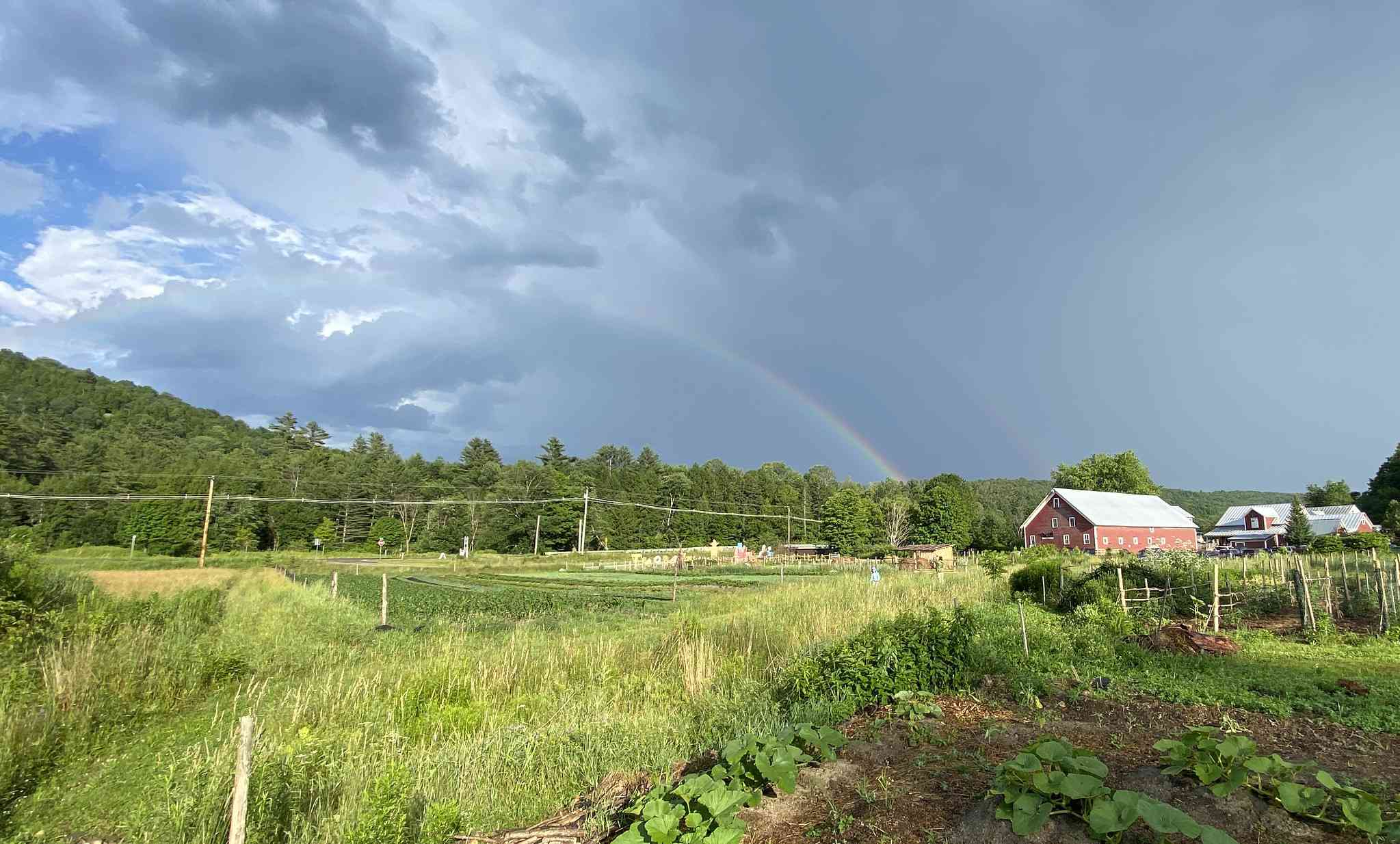 red farm house in a green field. the sky over head is gray but there is a rainbow in the distance