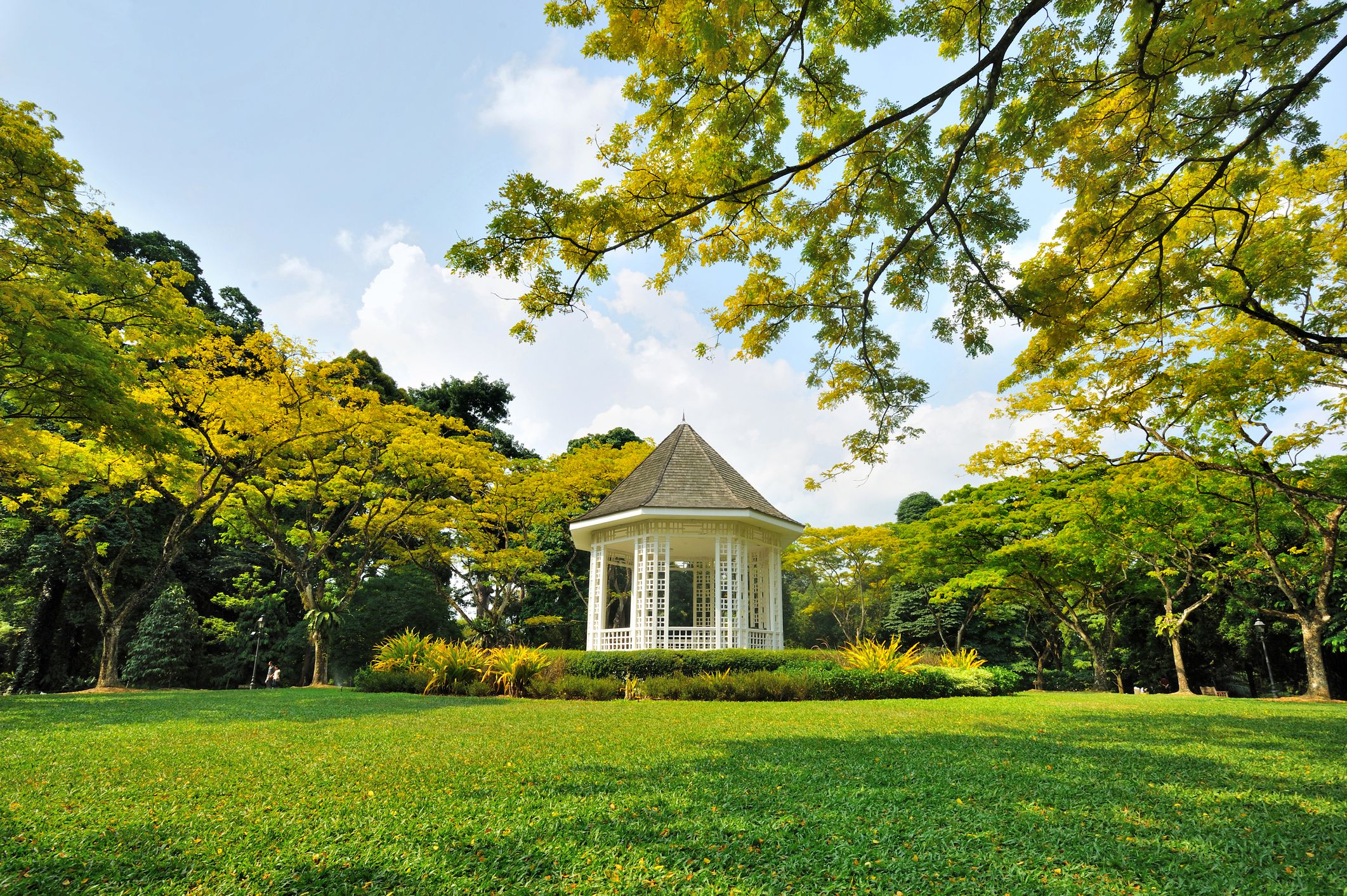 a gazebo and grassy space in the Singapore Botanic Gardens