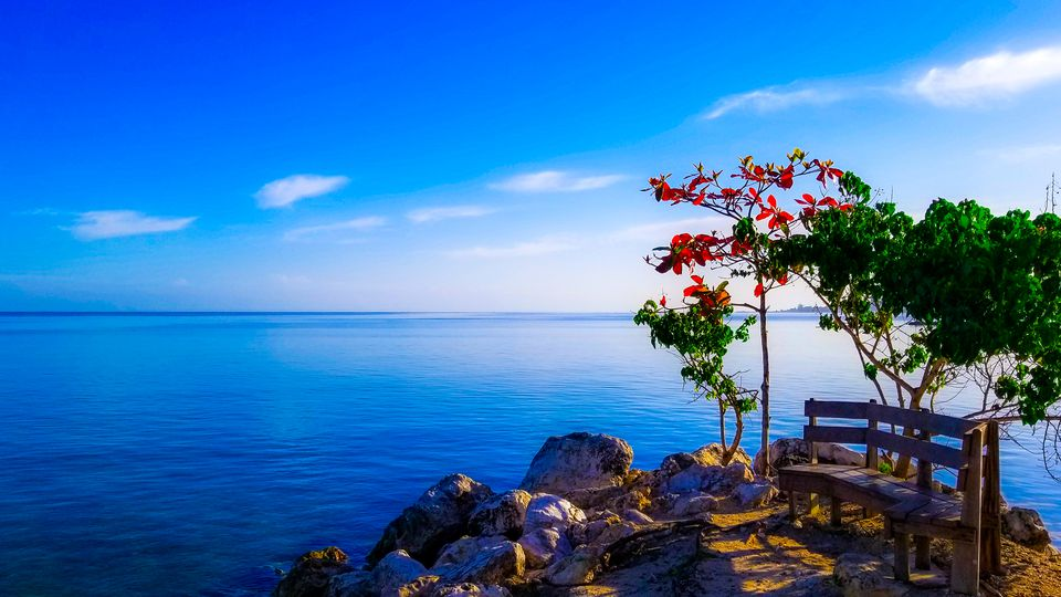 bench on a rock overlooking the sea in Jamaica