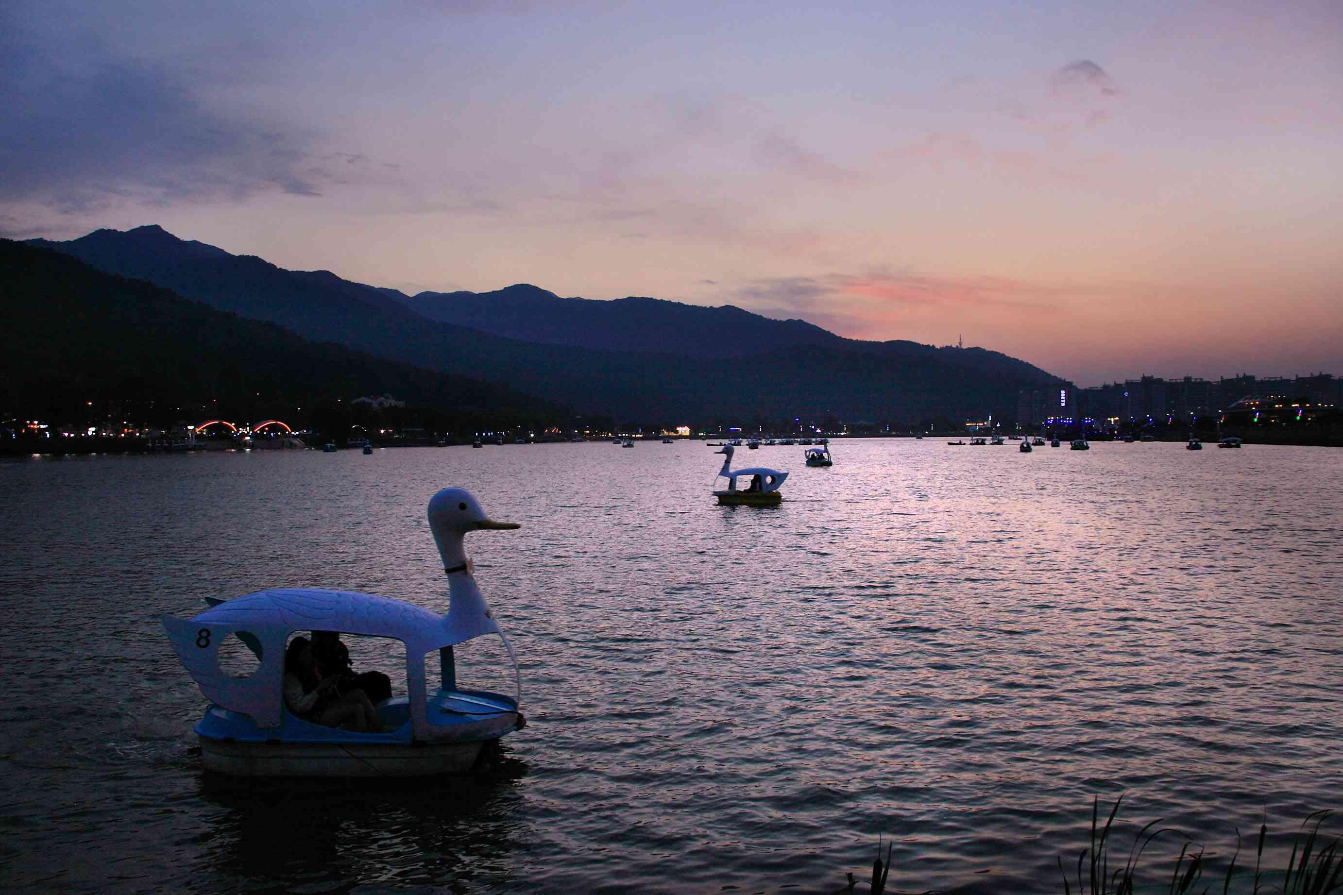 Swan boats on Lake Suseong at dusk
