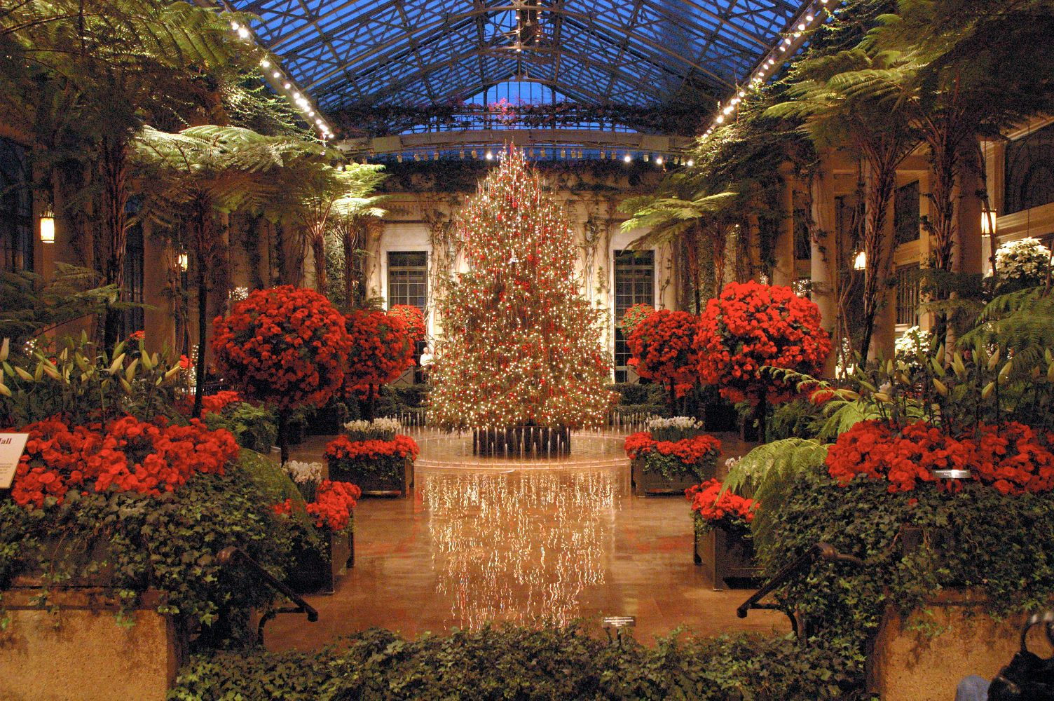 The 10 Best Things to Do in Delaware for the Holidays