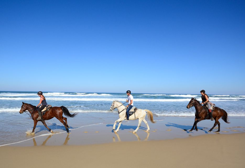 Riding horses along the beach at Kei Mouth, South Africa