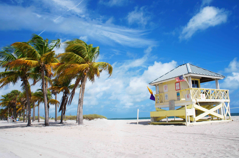 Crandon park Beach of Key Biscayne, Miami