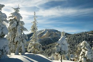 Pillows of snow at Deer Valley Resort