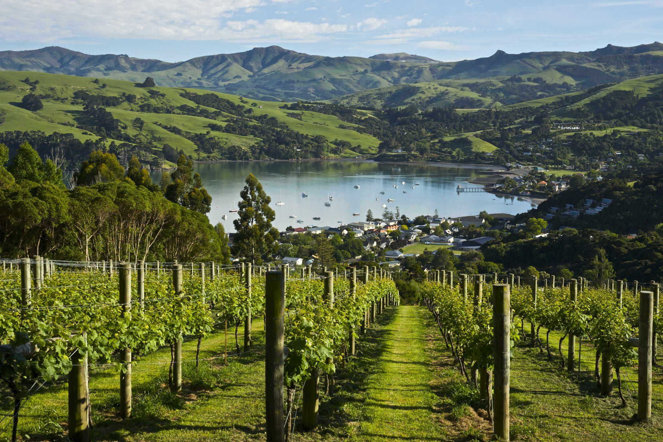 вечнозеленым поселок каитангата новая зеландия фото том, что многие