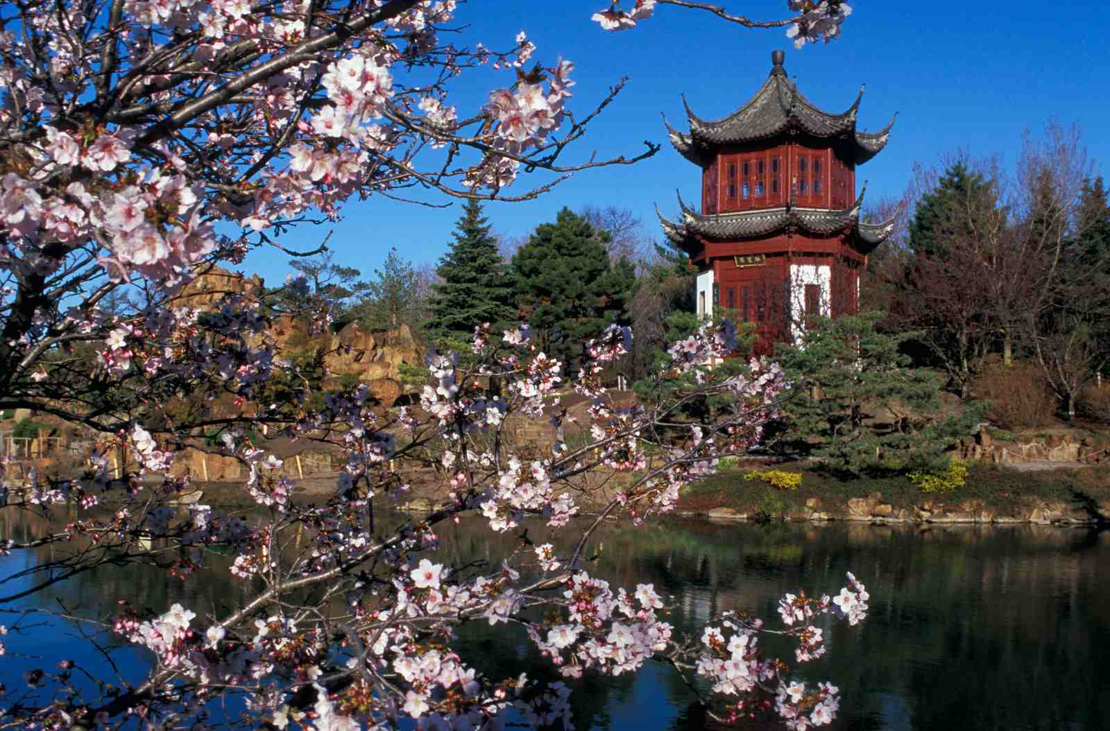 Montreal's top 15 museums include the Montreal Botanical Garden.