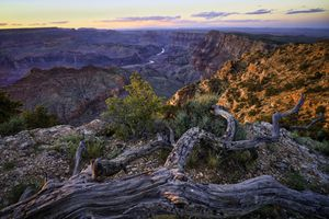 The Grand Canyon in summer