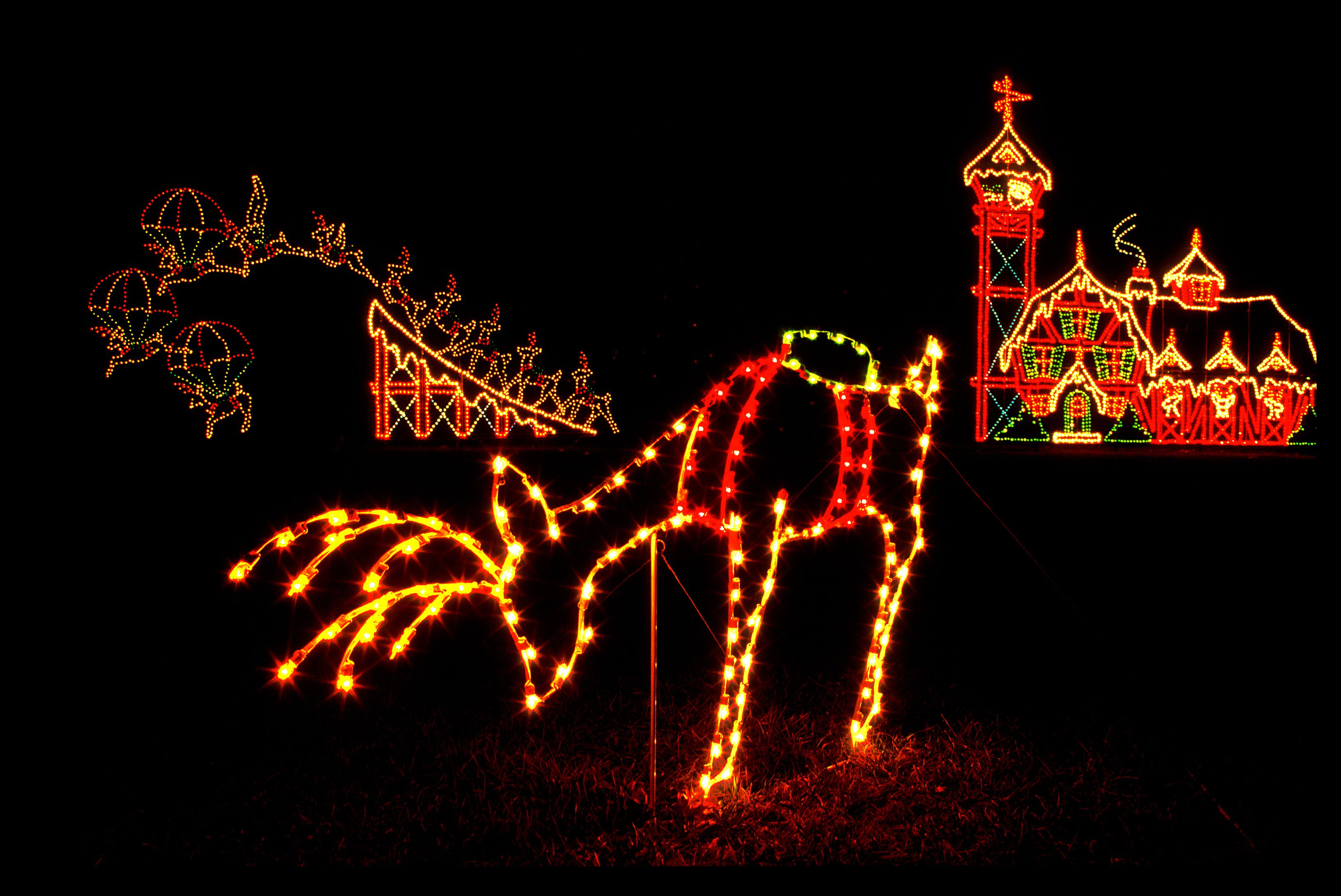 Winter Lights at Seneca Creek State Park Gaithersburg MD