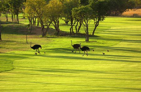 Zebula Country Club Golf Course, South Africa