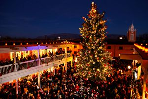 Town square with large christmas tree and surrounded by people