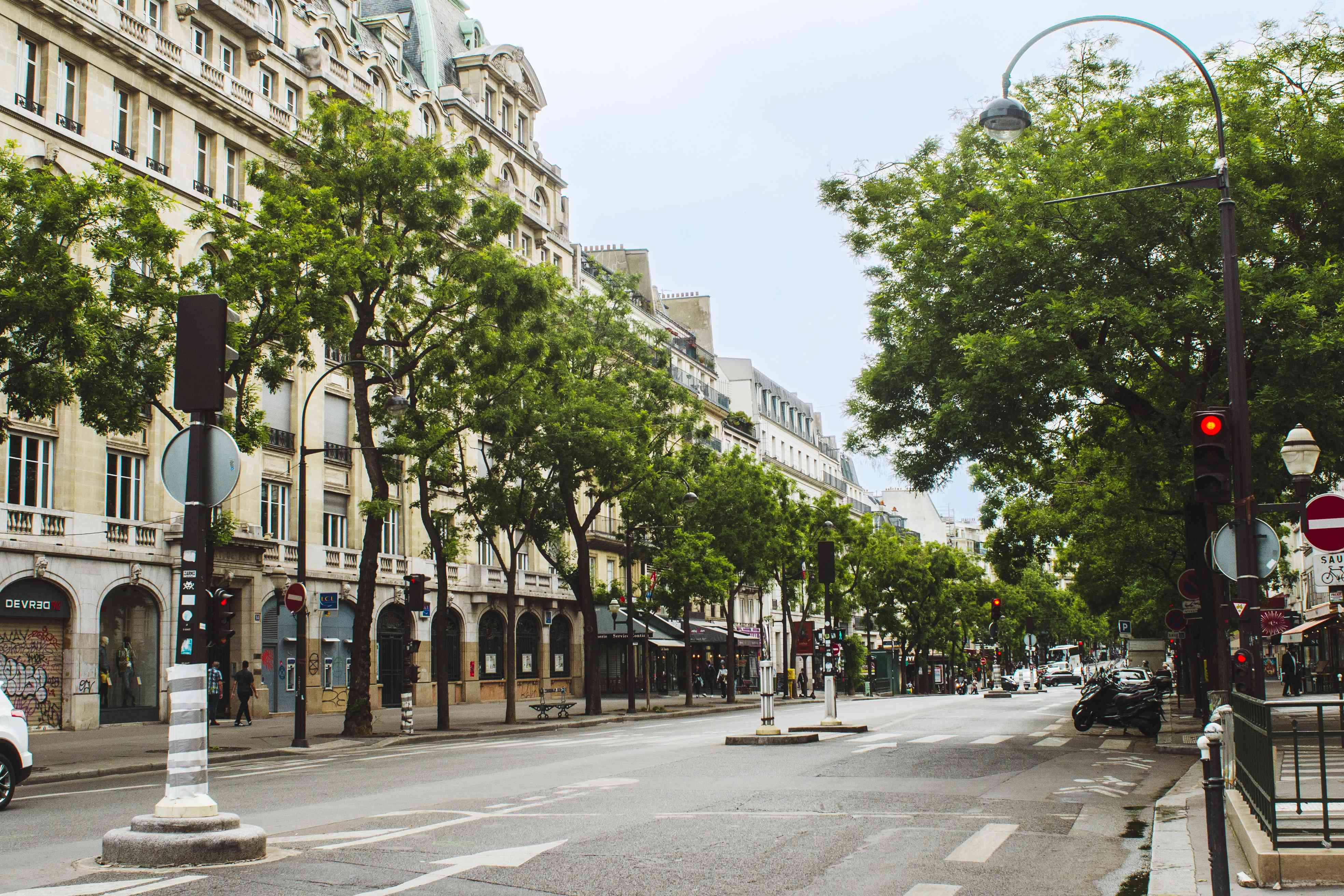 Tree lined streets in Paris