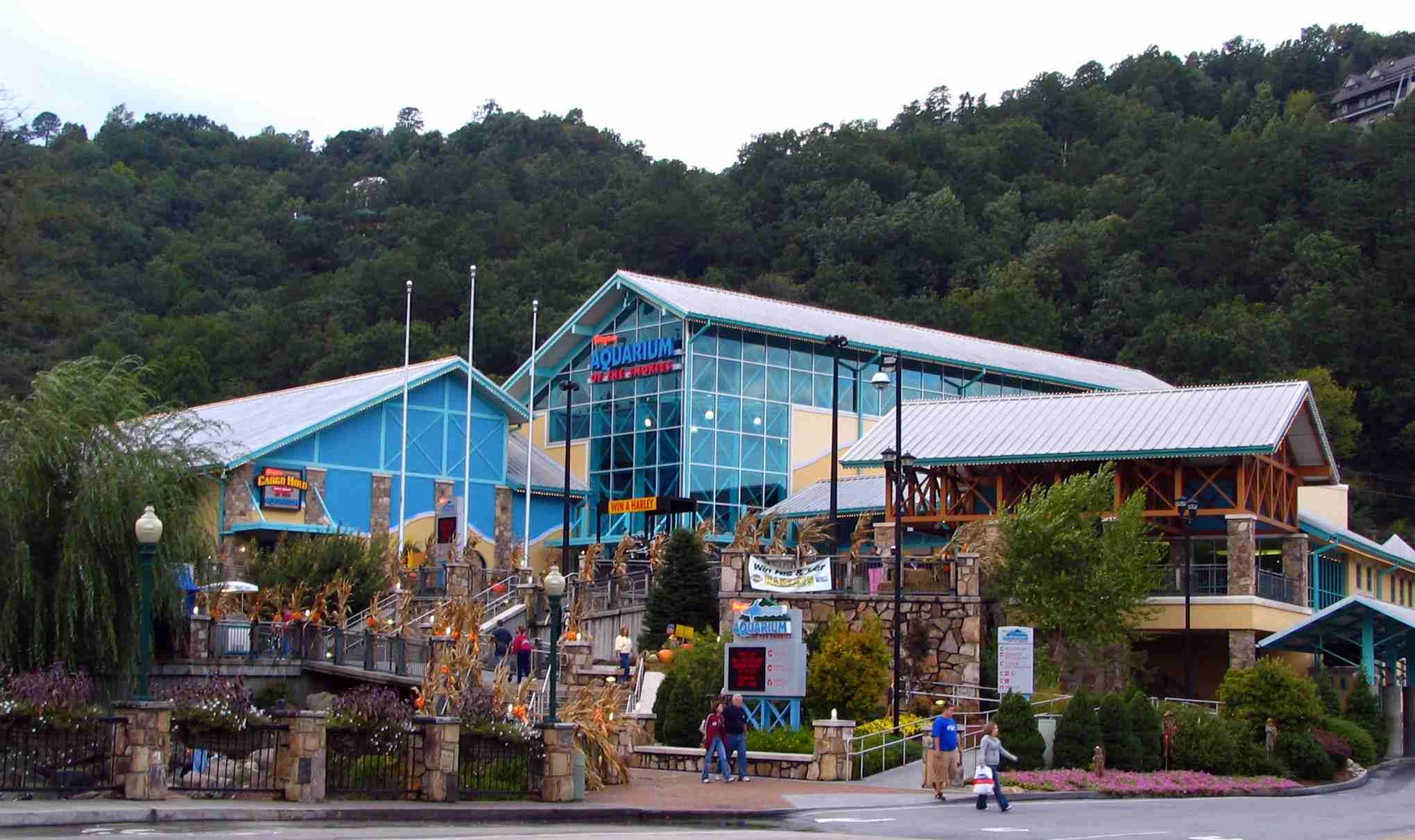 Ripley's aquarium in tennessee