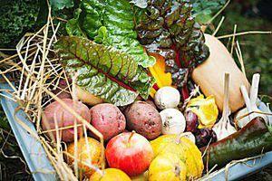 Fresh, local produce box from UBC Farms