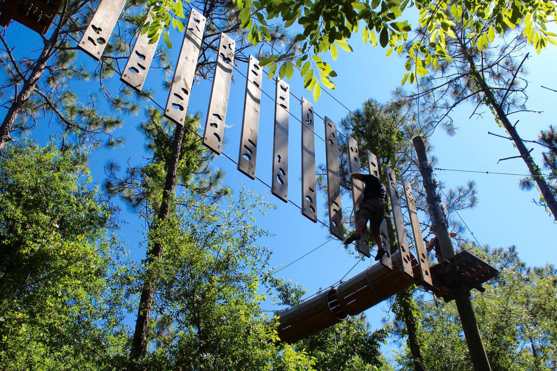 Tree Trek Adventure Park in Orlando