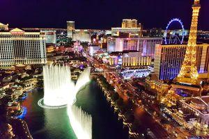The Lights Of The Las Vegas Strip